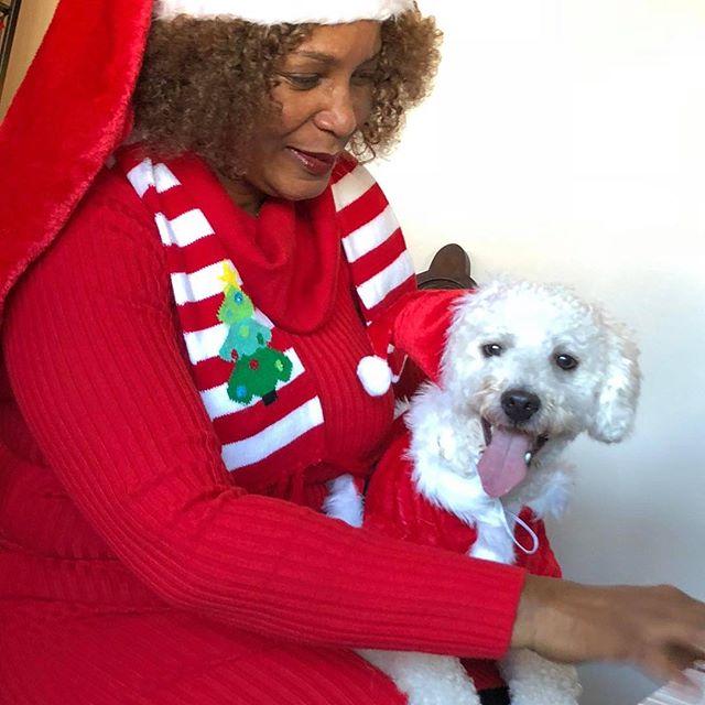 Roscoe singing to Jingle Bells! #classicalmusic #classic music #dogsofinstagram #catsofinstagram #doggystyles #veterinariansurgery #veterinária #veterinarias #dogkennels