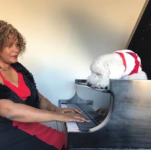 Roscoe relaxing to Christmas Carols- #dogs #musictherapy #ilovemydog #veterinária #veterinarian #kennel #dogkennels #cat music#cat music therapy# doggydaycare