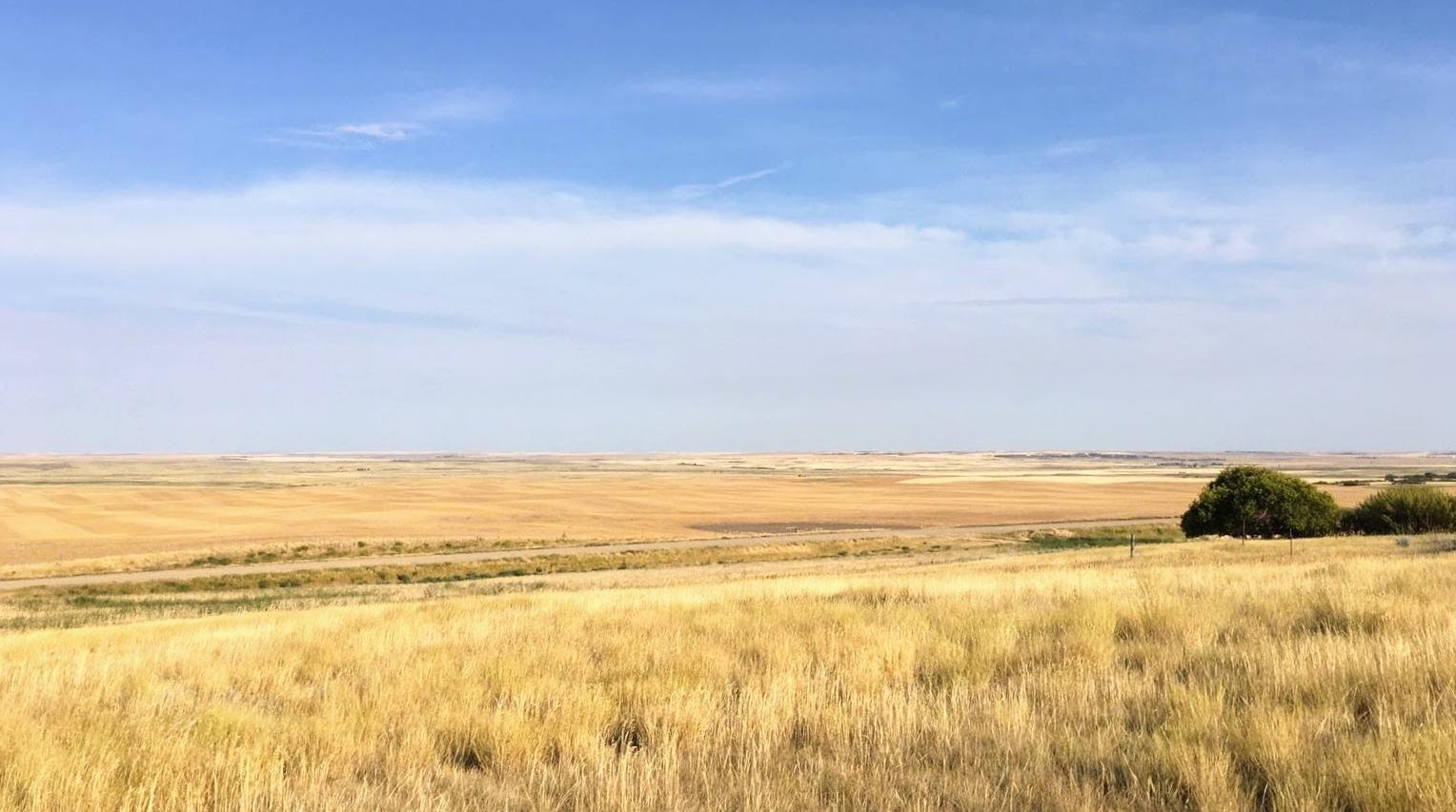 2017 Nostbakken vista.jpg
