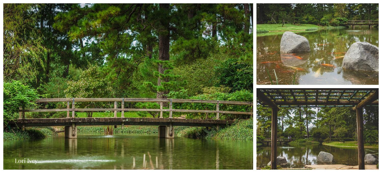 Bridge over koi poind at the Japanese Gardens, Hermann Park