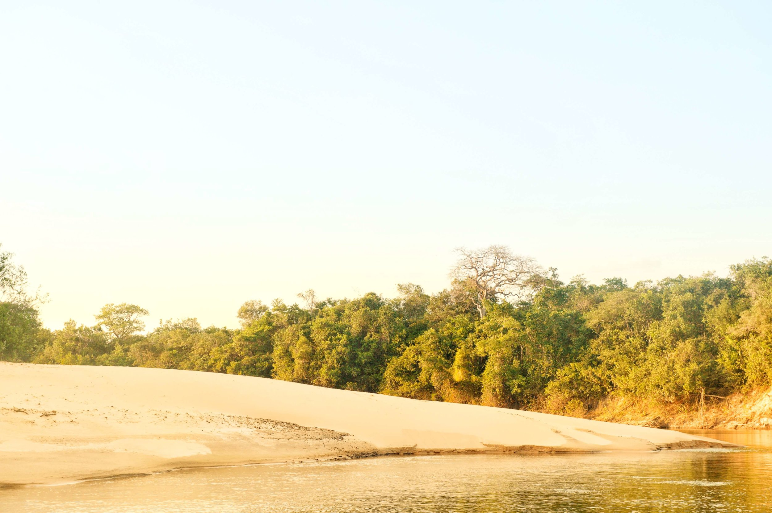 ColombianLlanosRiverBeach-1231.jpg