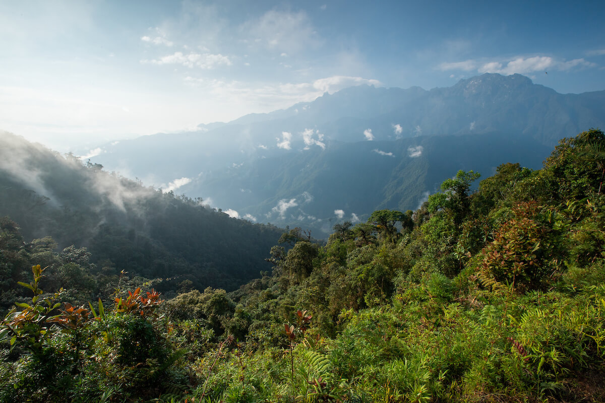 Tatamá National Park. Photo: Julian Manrique / WhereNext