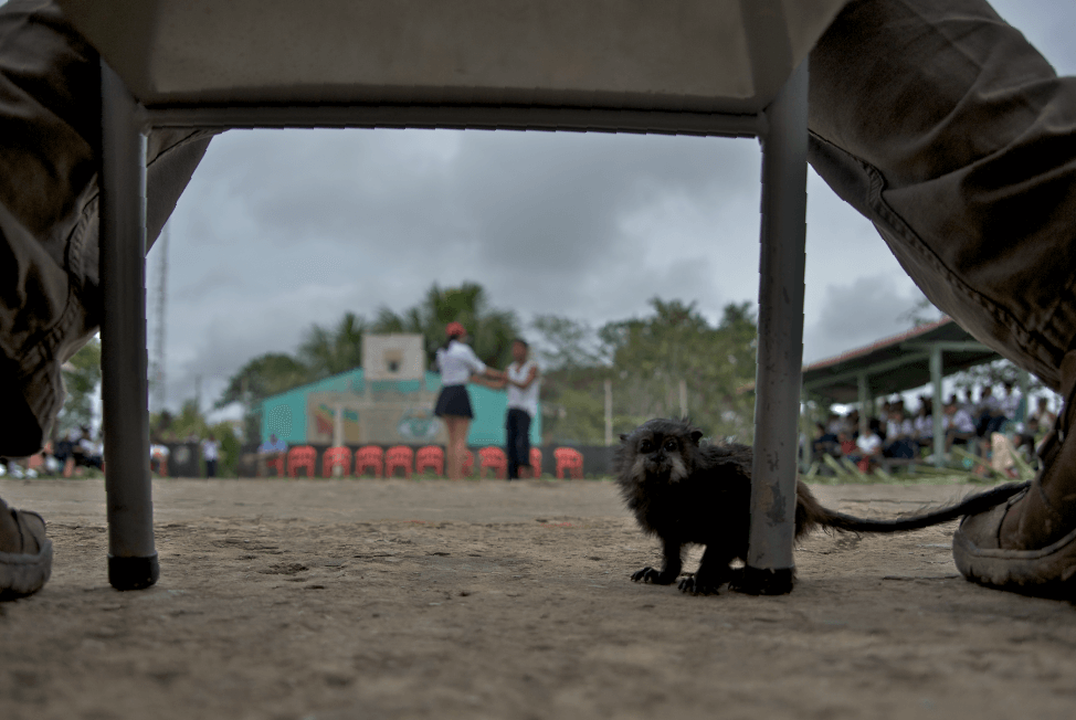 Puerto_Nariño_Colombia_Amazon