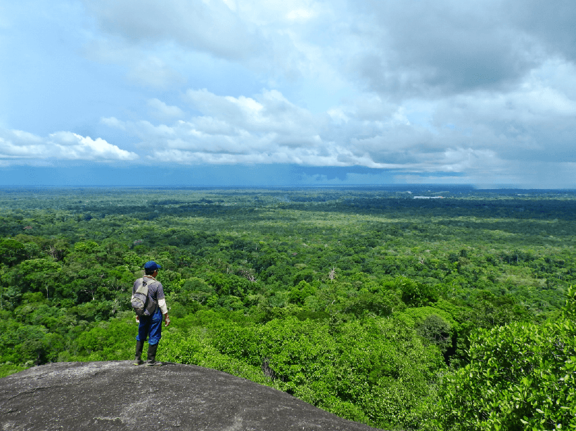 Miguel Portura, a Tucano native and bird guide, overlooking the jungles of Vaupés from the peak of Cerro Guacamaya