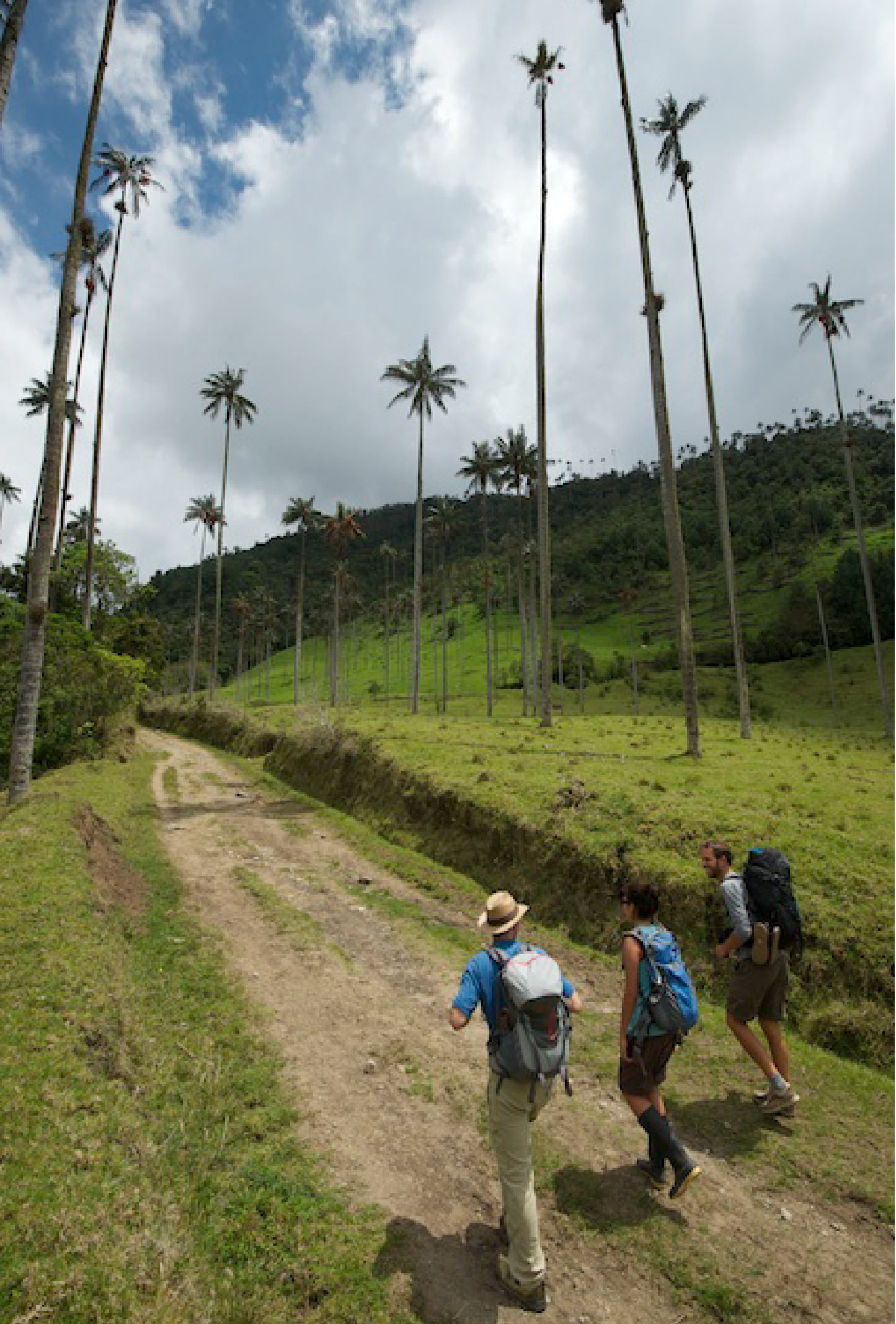 Cocora Valley - WhereNext producing  ExOfficio's  2015 Global Marketing Campaign