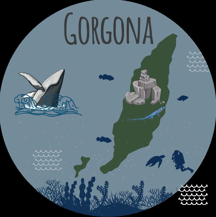 Gorgona Island / Isla Gorgona