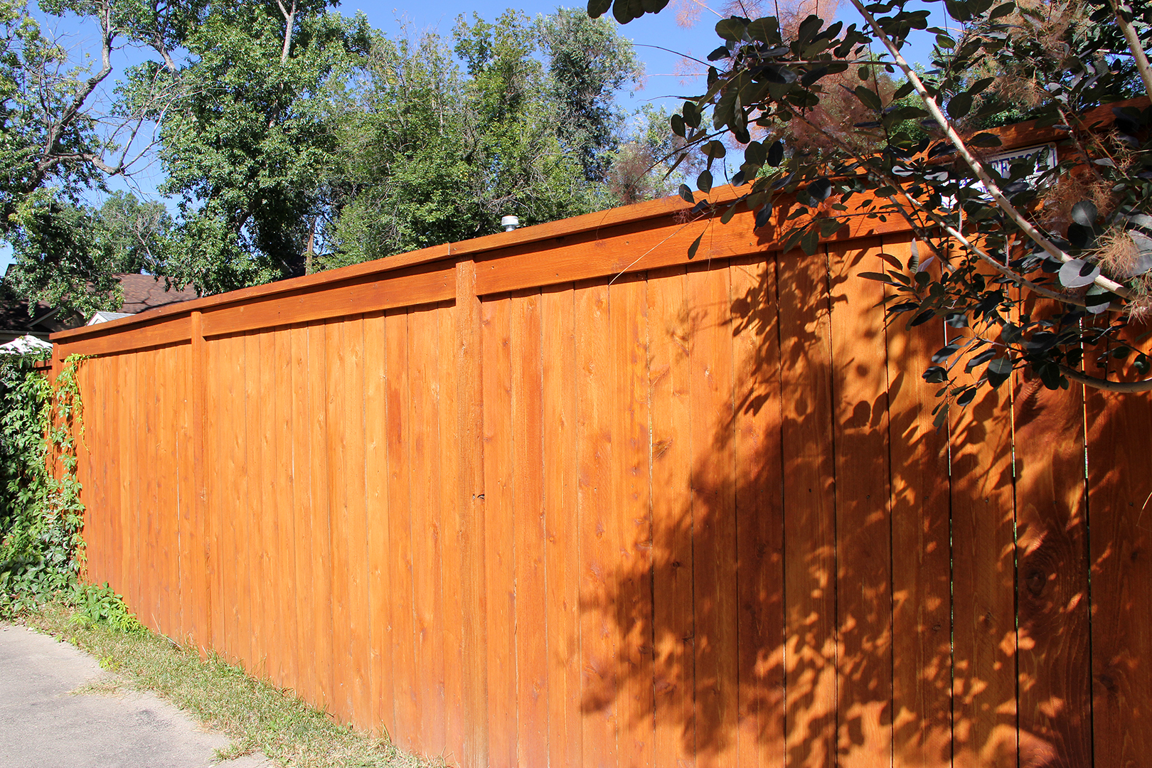 Tall Custom Cedar Fence in Colorado Springs
