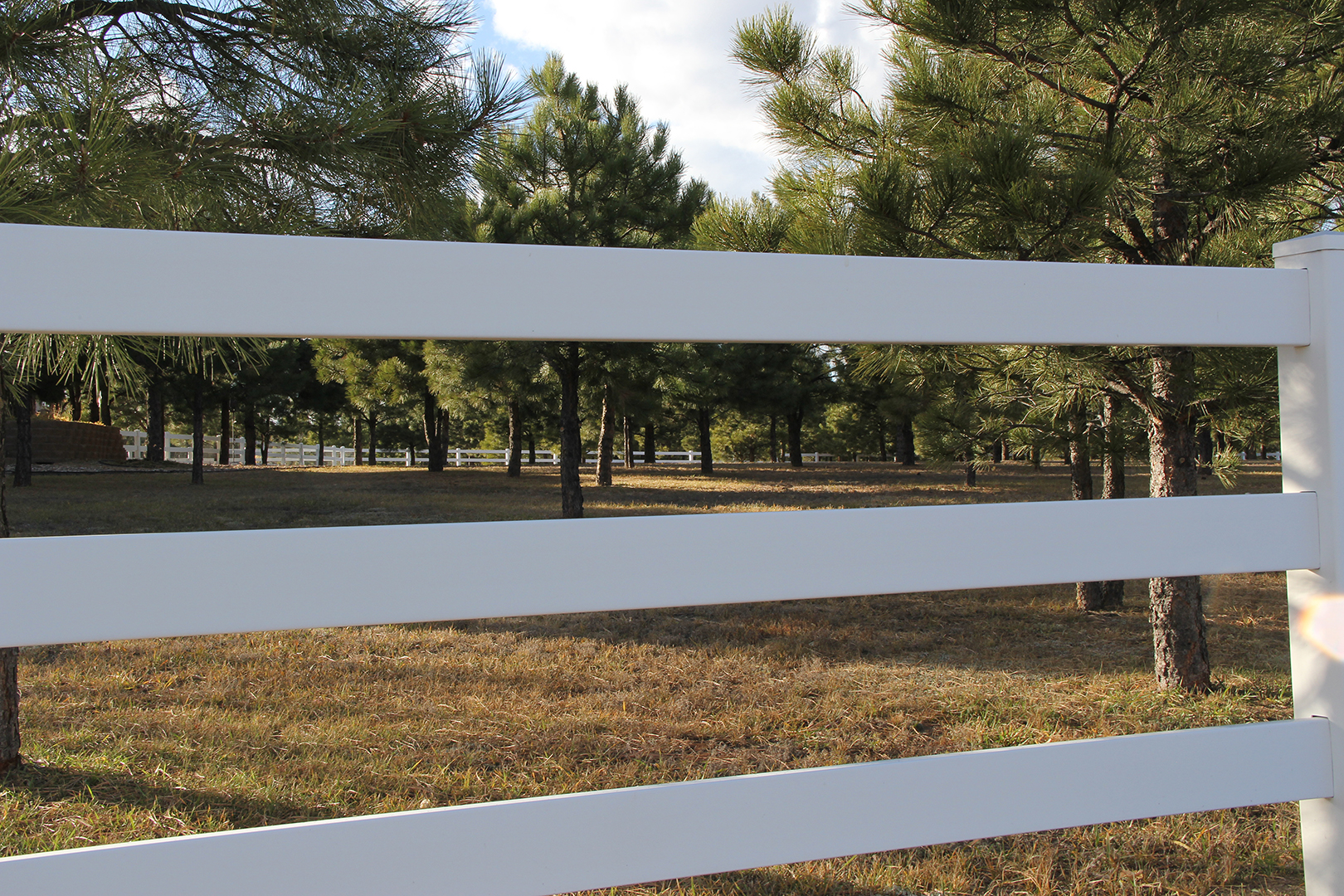 Vinyl Customized Fence in Colorado Springs