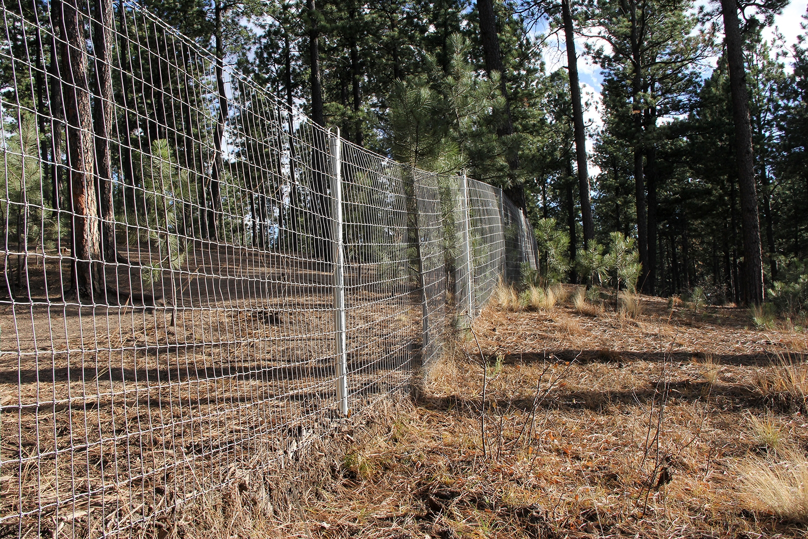 Custom Horse Fencing Colorado Springs