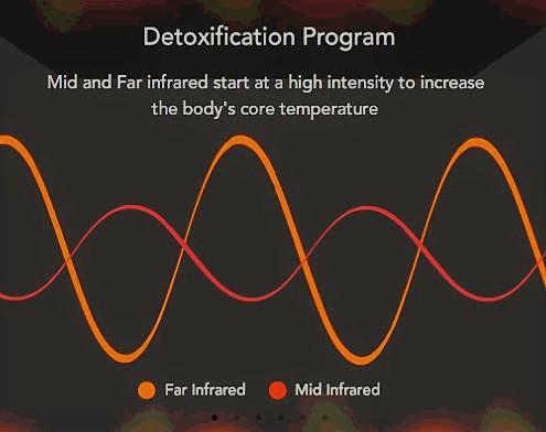 Detox 1.JPG