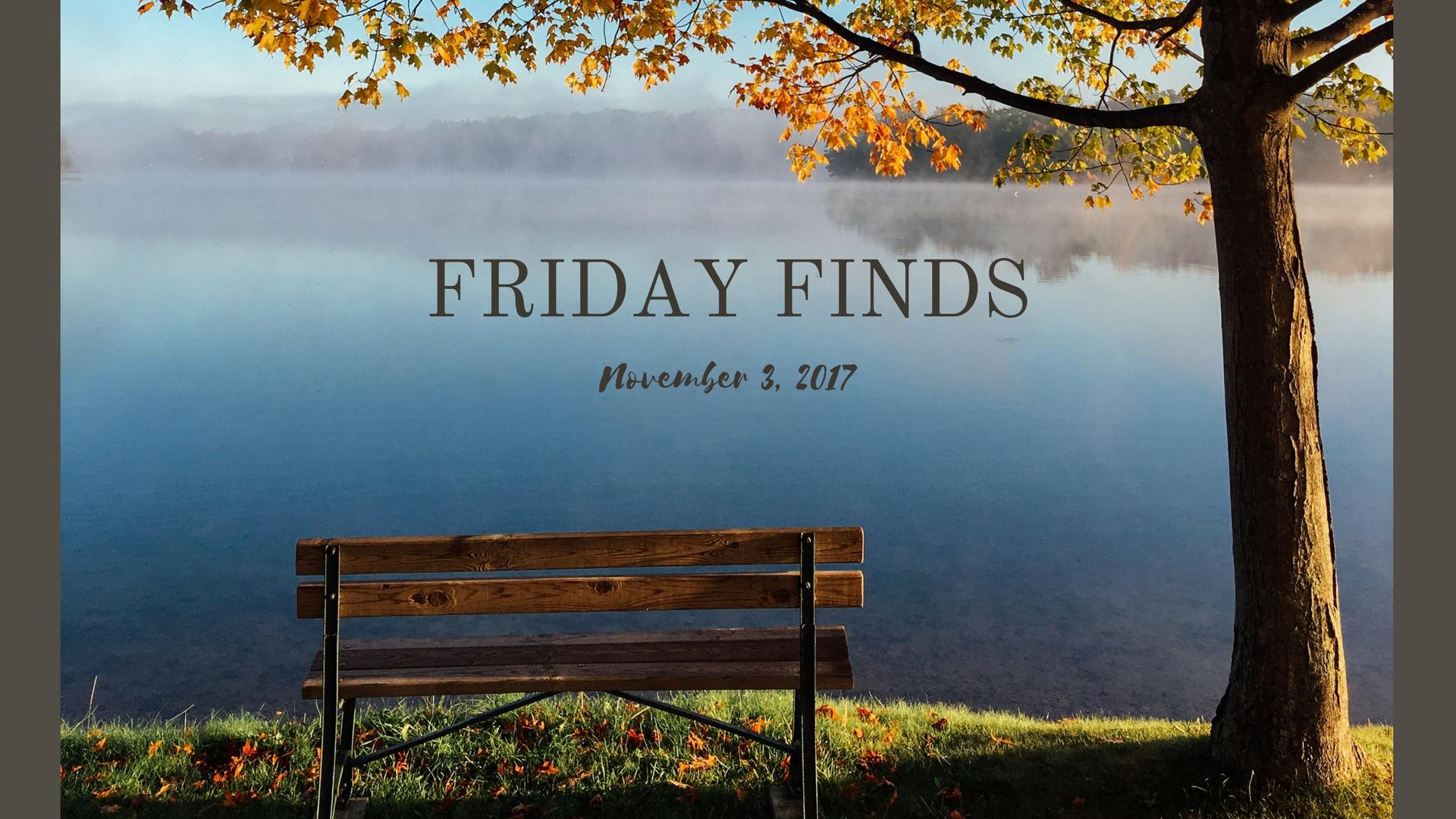 Friday Finds_11317.jpg