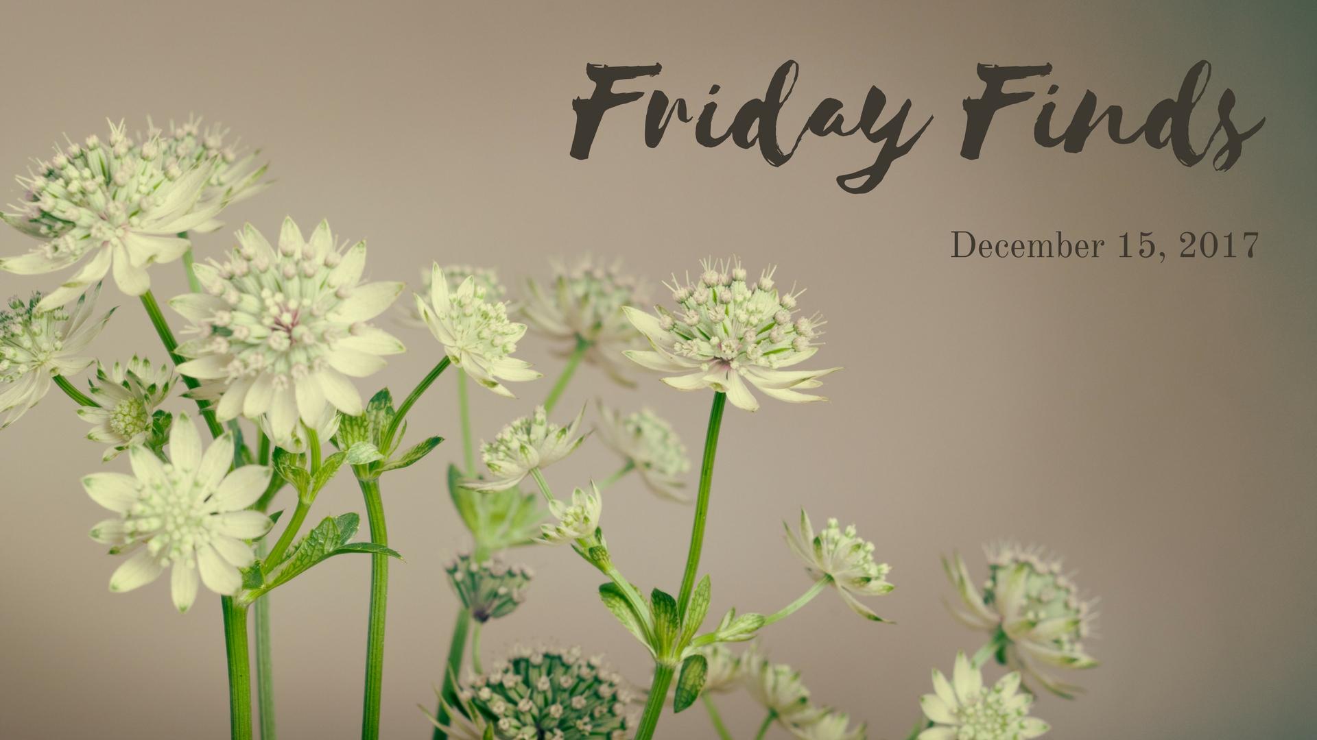 Friday Finds_12.15.17.jpg