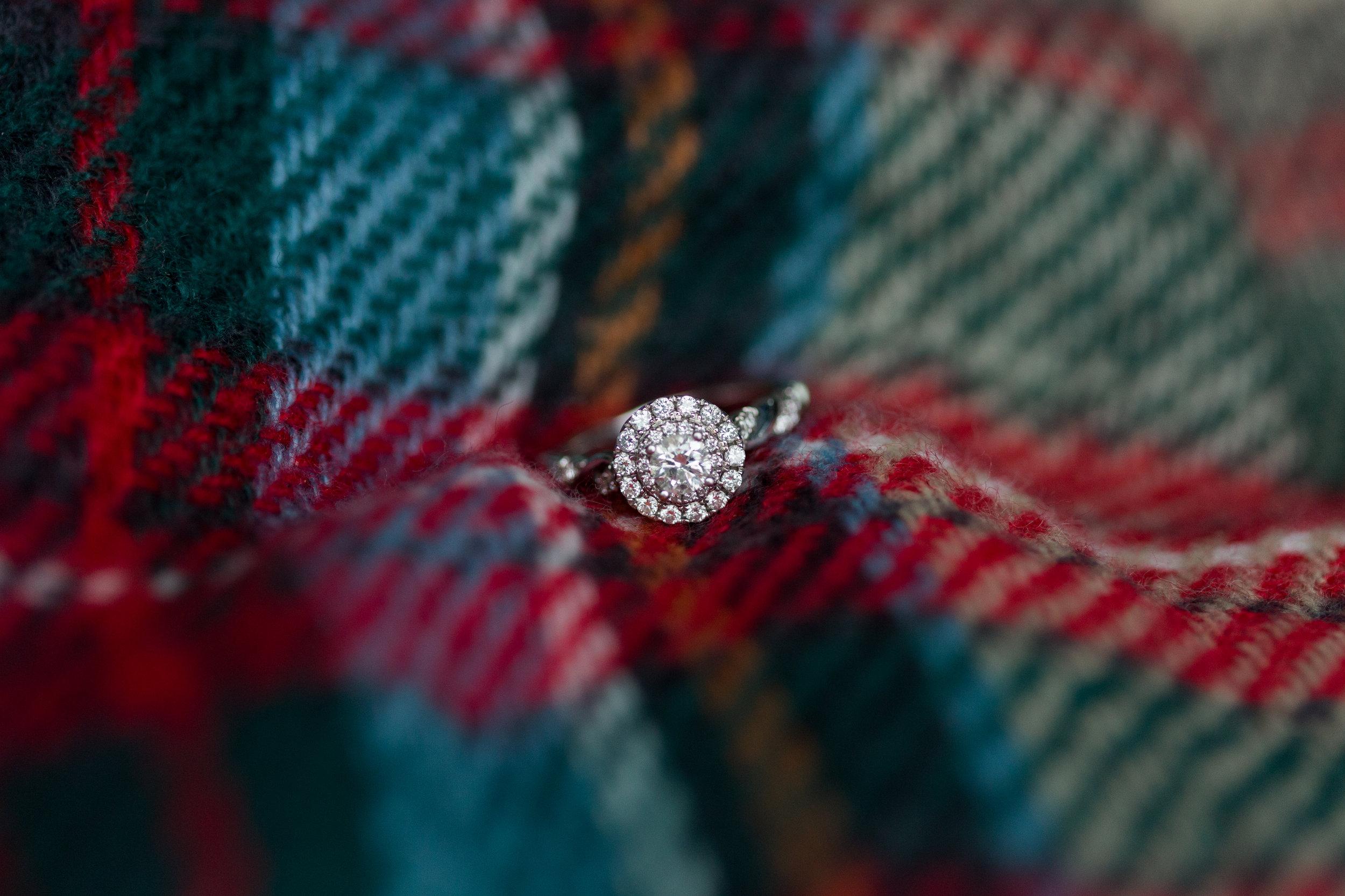 Kump.Engagement.110517-109.jpg