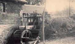 molenaar1.jpg