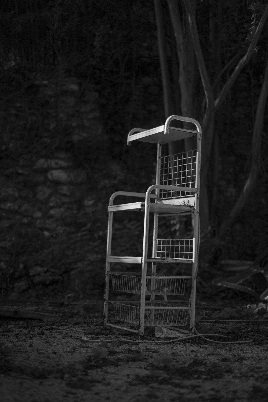 3, The Mutability of Identity, by Reba J