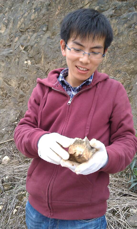 Dr. Fefei Zhang