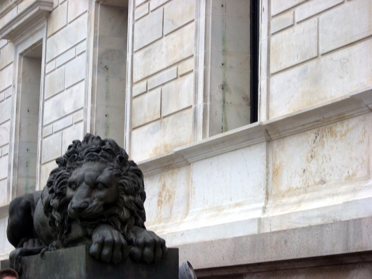 Lions -
