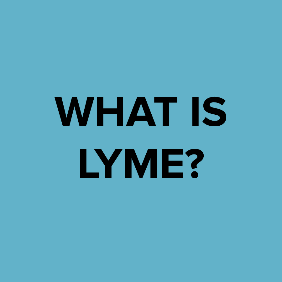 Lyme Advise: What is Lyme