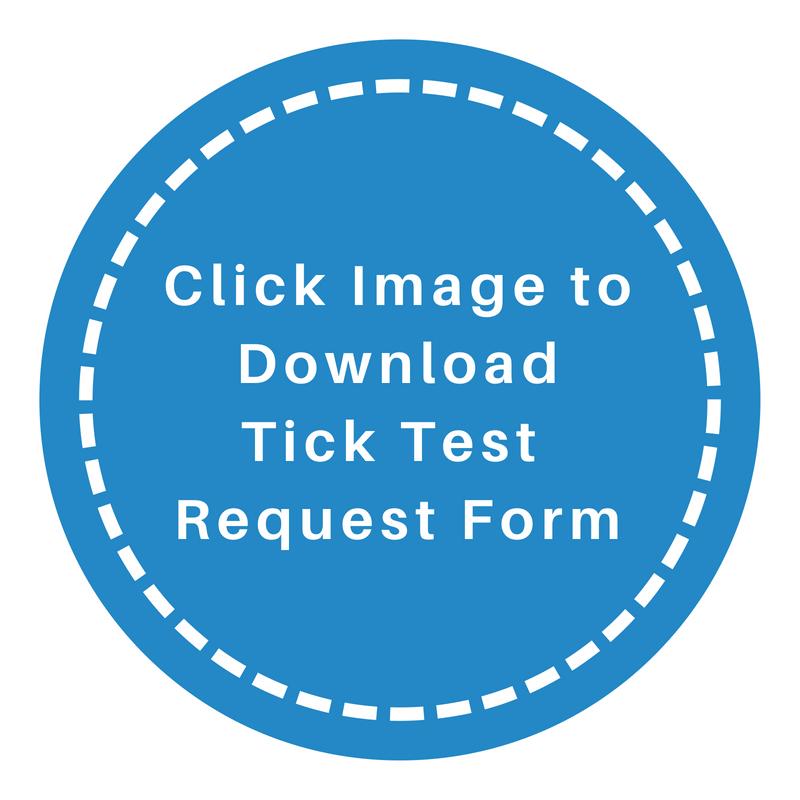 Test CIrcles (19).png