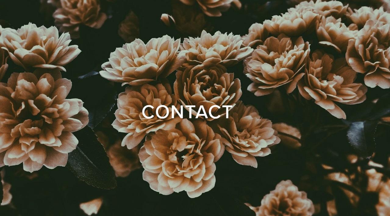 Sean Svoboda Contact.jpg