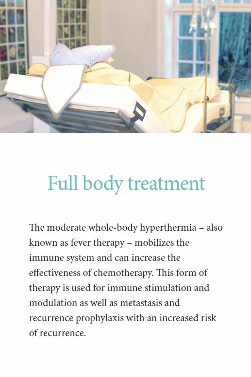 Misho Clinic Lyme Advise Full Body Treatment.jpg