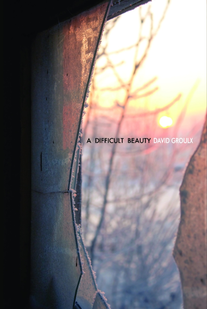 Difficult Beauty Cover.jpg