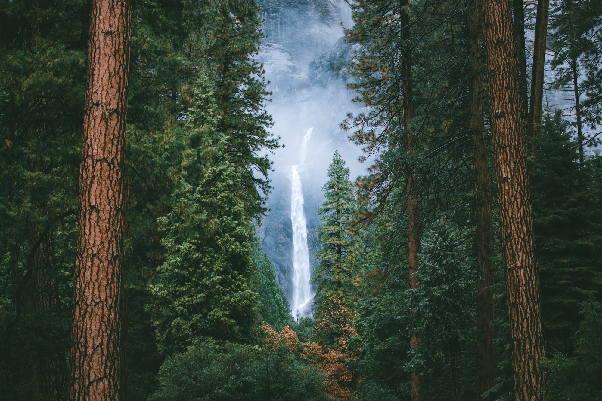 YosemiteFallsWebsite.jpg