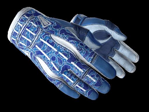 Sport Gloves Amphibious csgo skin