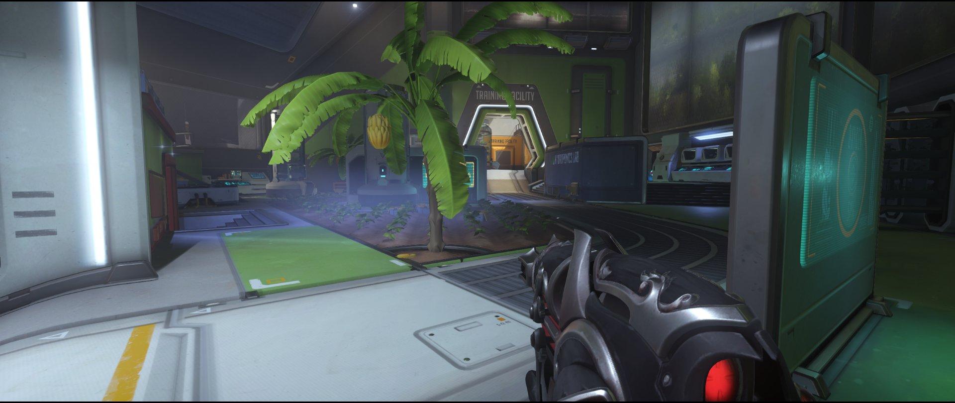Start+point+two+door+defense+sniping+spot+Widowmaker+Horizon+Lunar+Colony+Overwatch
