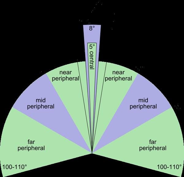 Peripheral vision of the human eyes