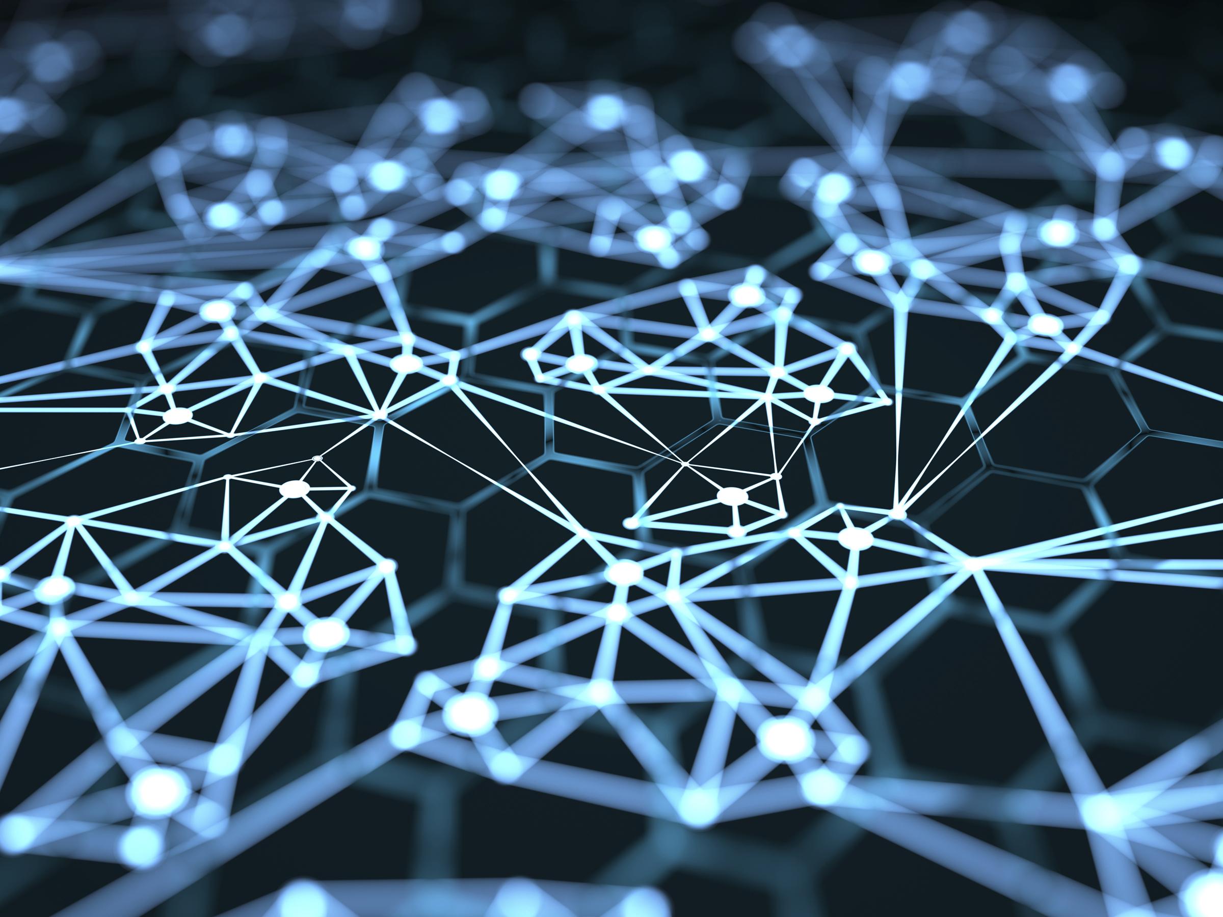 network.jpg