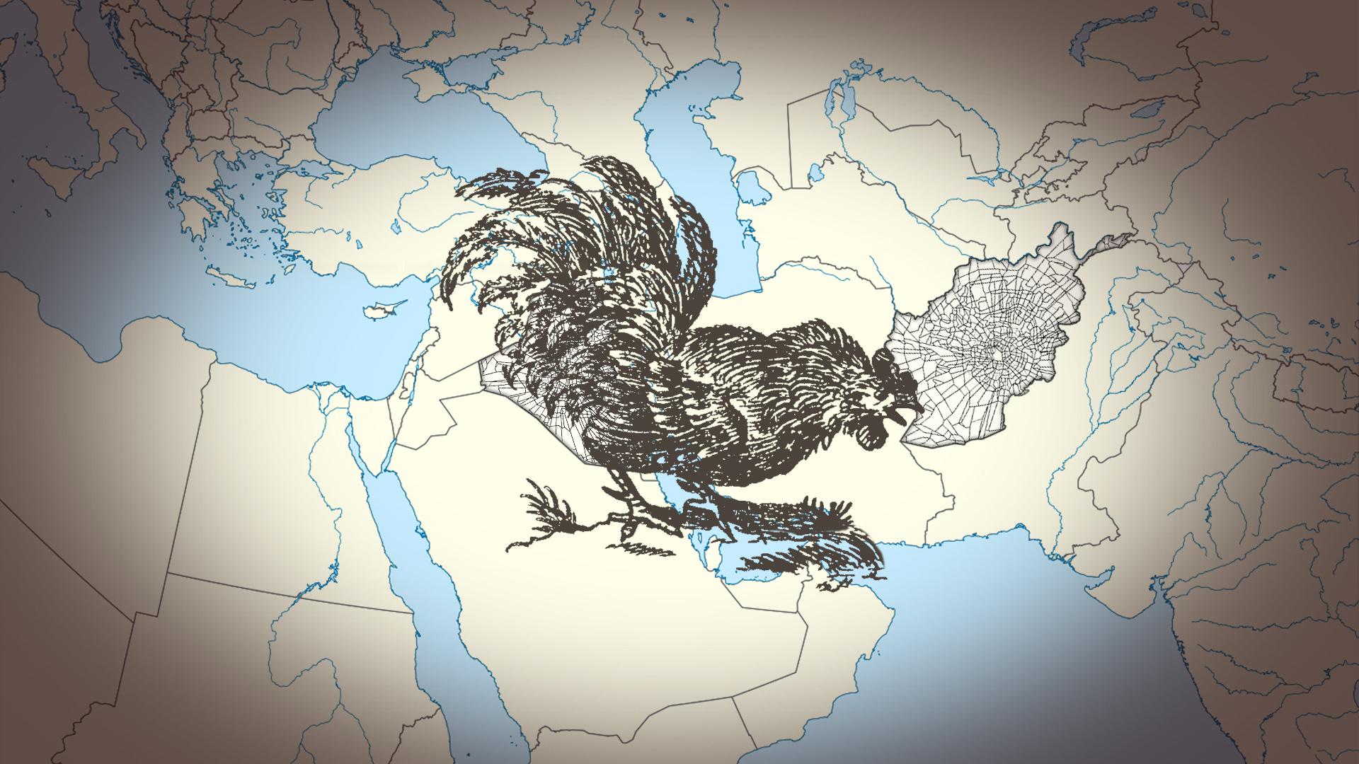cock on Iraq.jpg