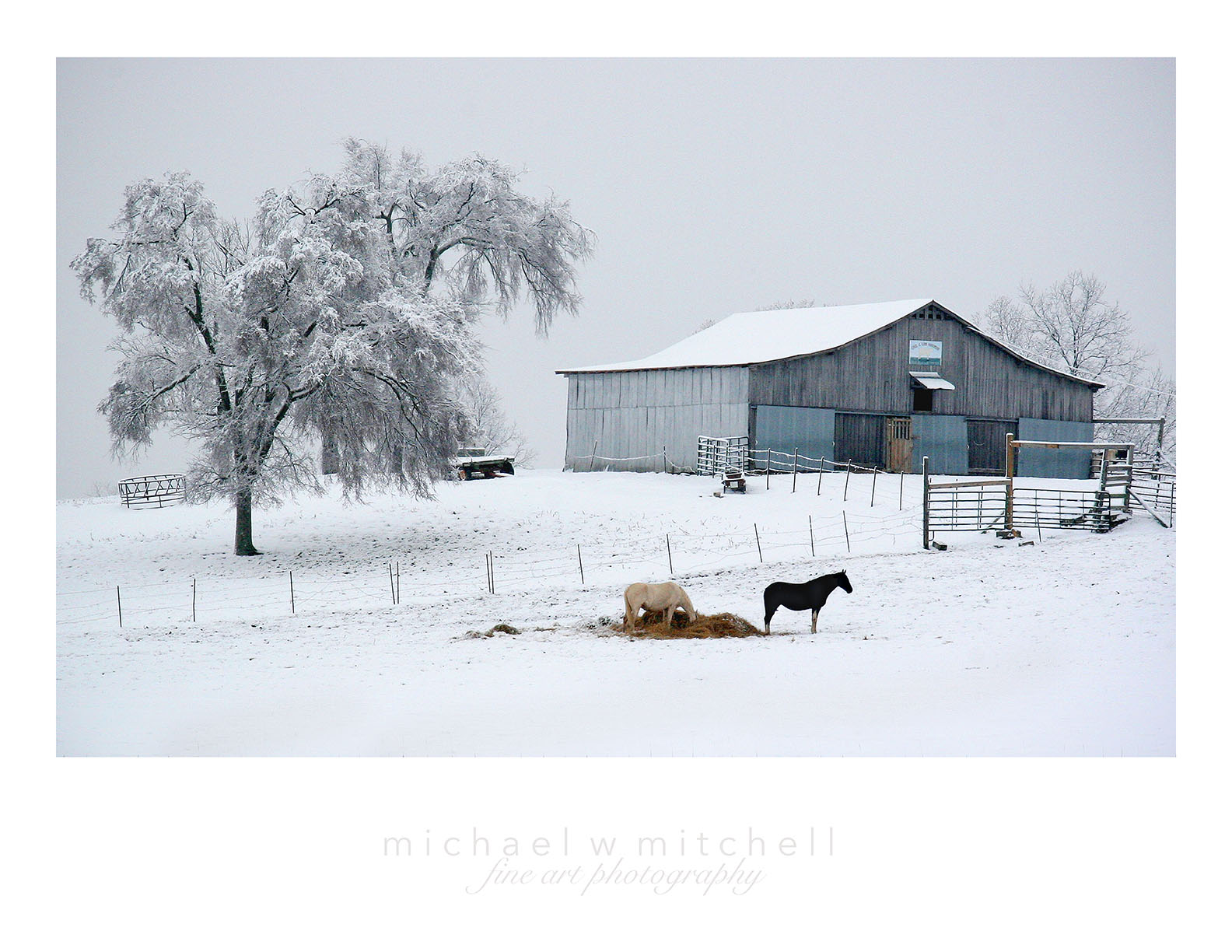Winter Horse Ranch