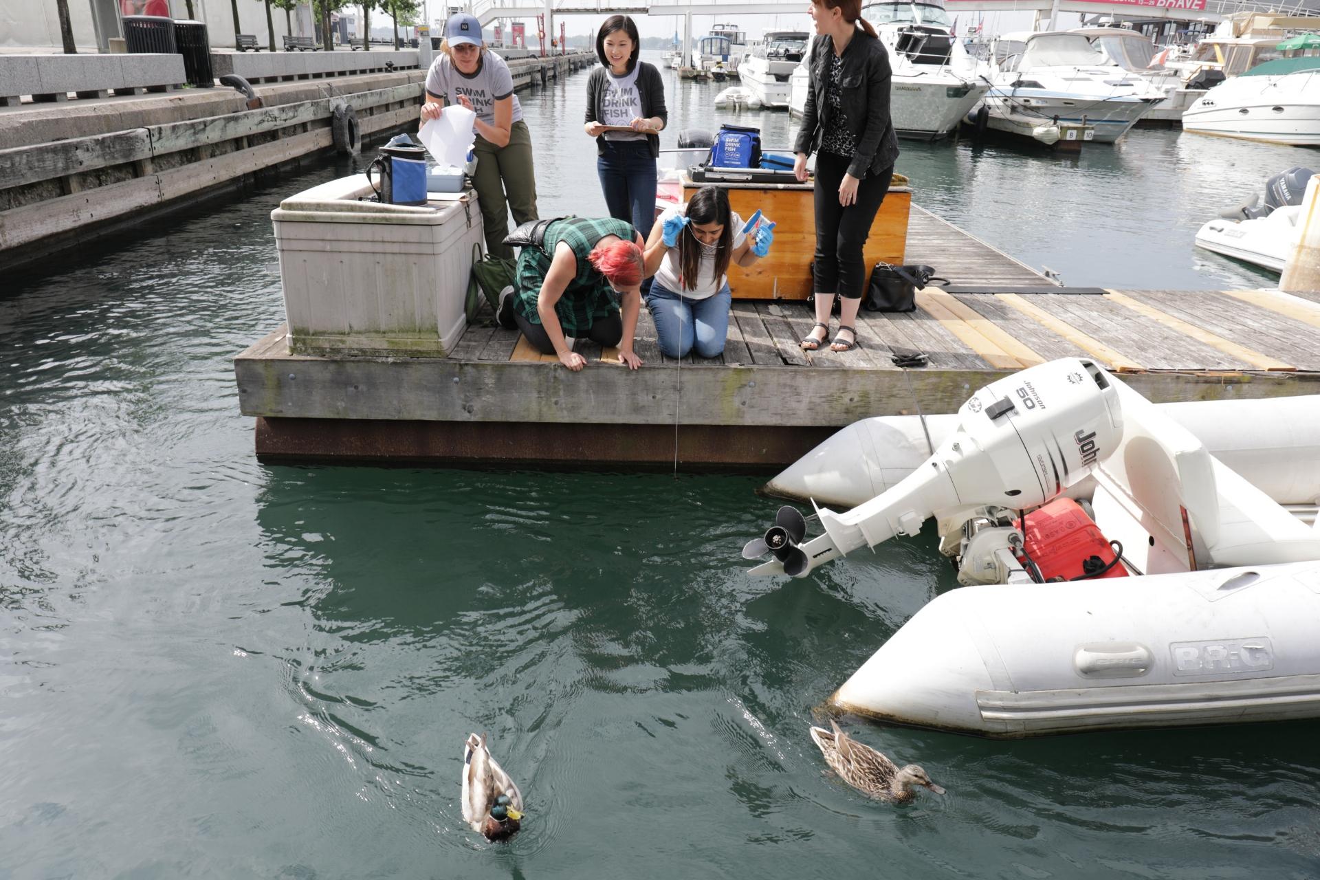 Swim Drink Fish Citizen Science Monitoring -