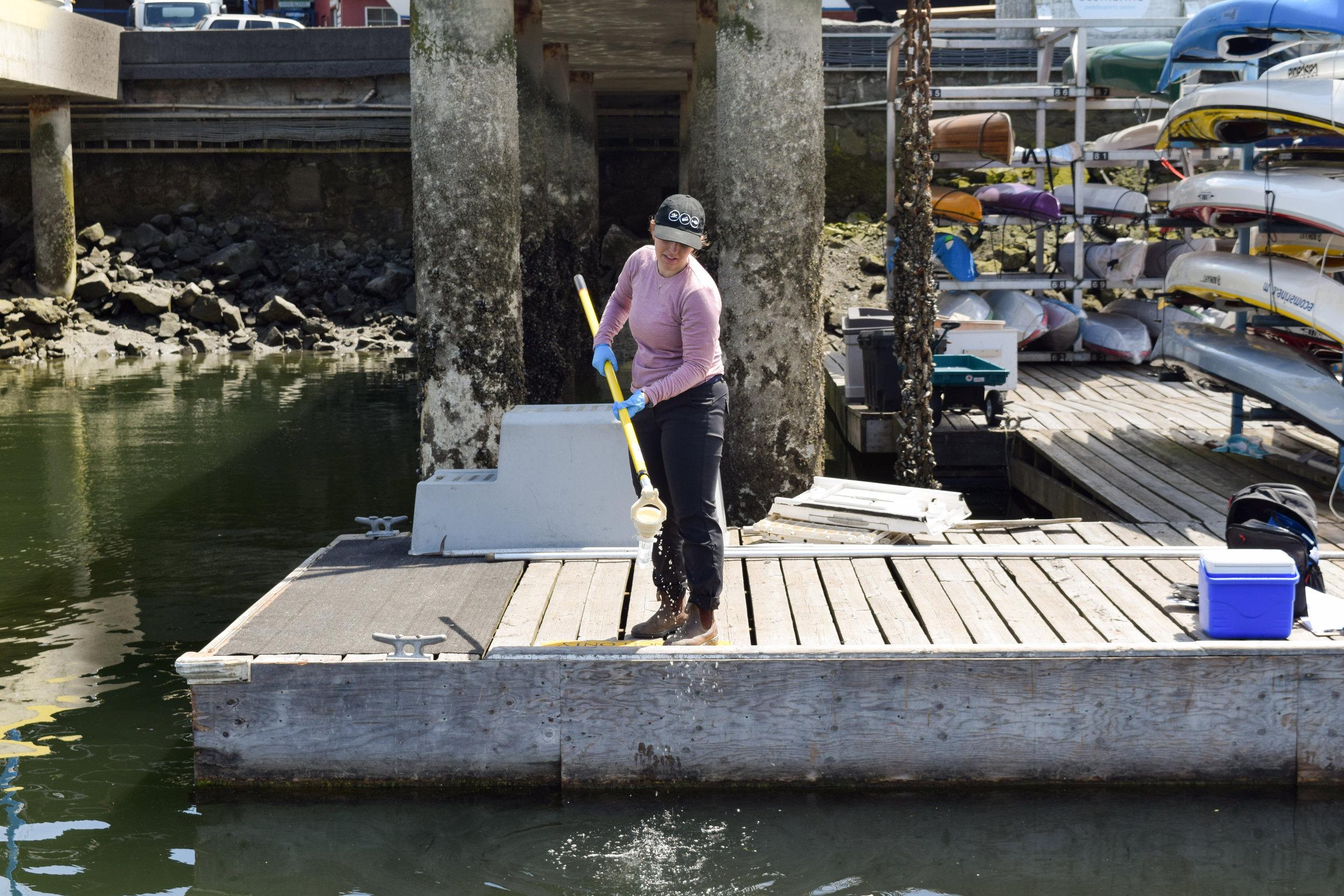 Swim Drink Fish staff monitoring in False Creek in Vancouver