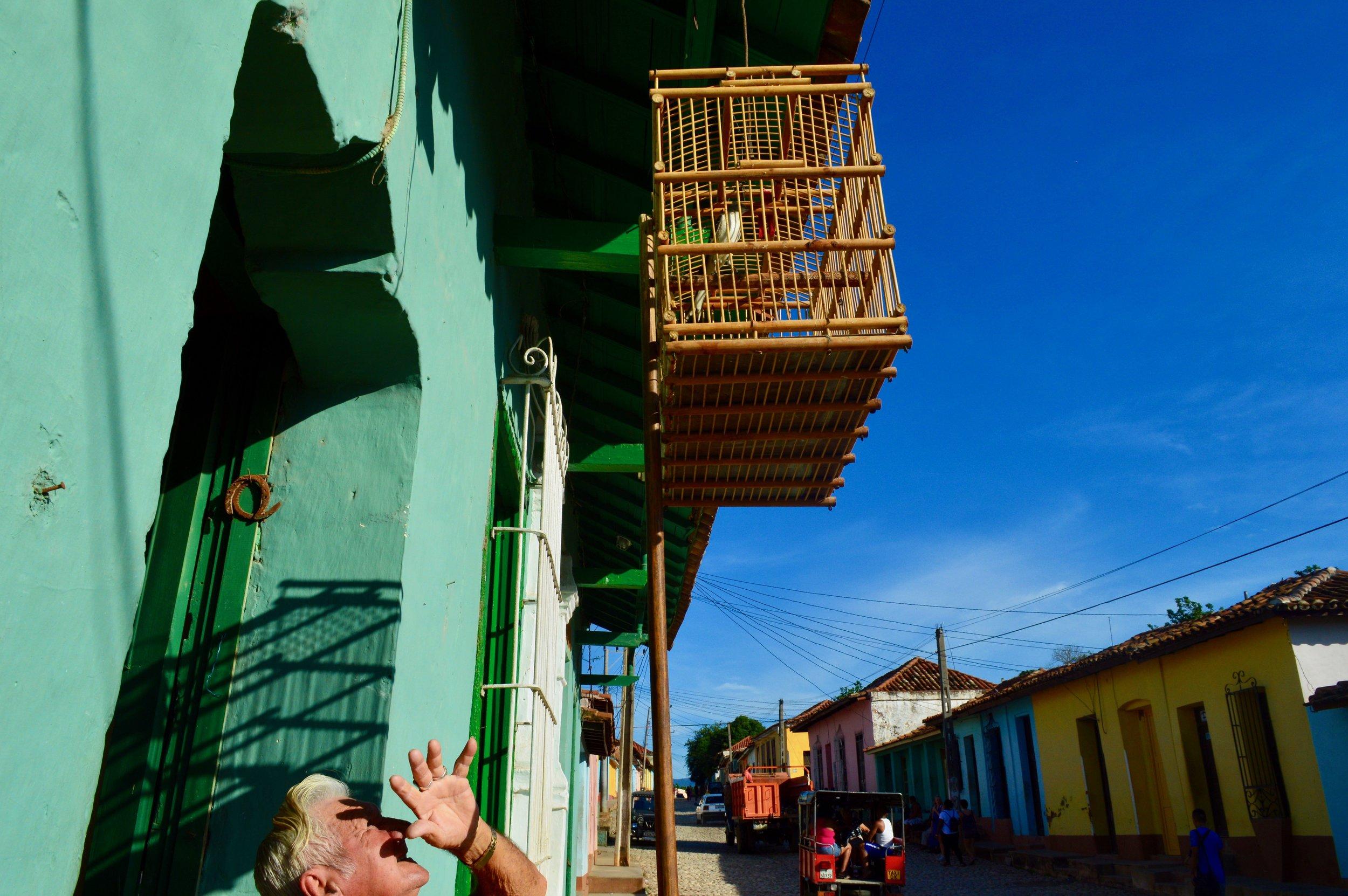 Trinidad- Viejo y pájaro.jpg