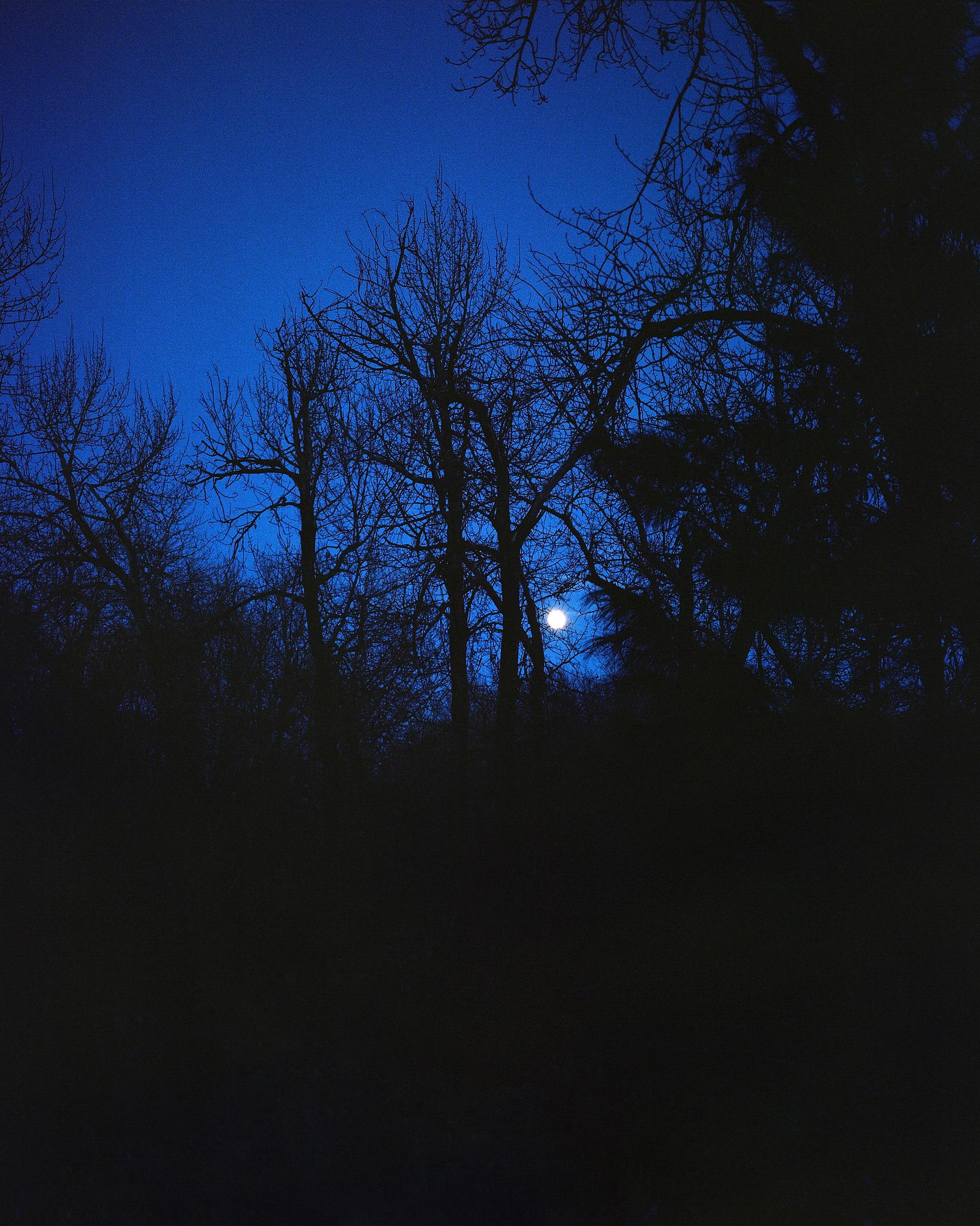 Moon at Ranch.jpg