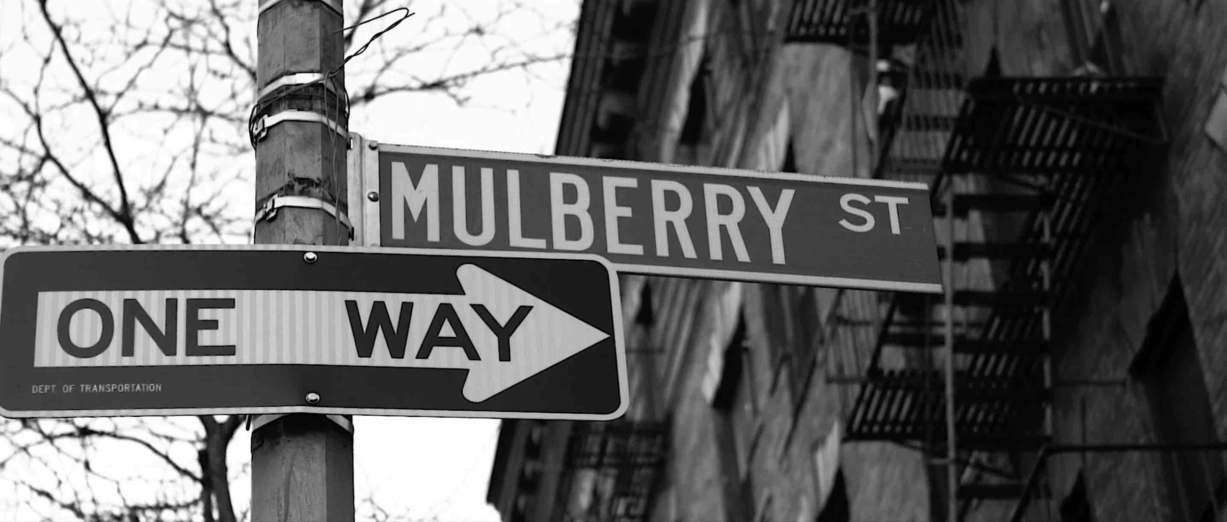 """SCREEN SHOT FROM THE SHORT FILM """"MULBERRY. A NEW YORK GENTRIFICATION STORY."""""""