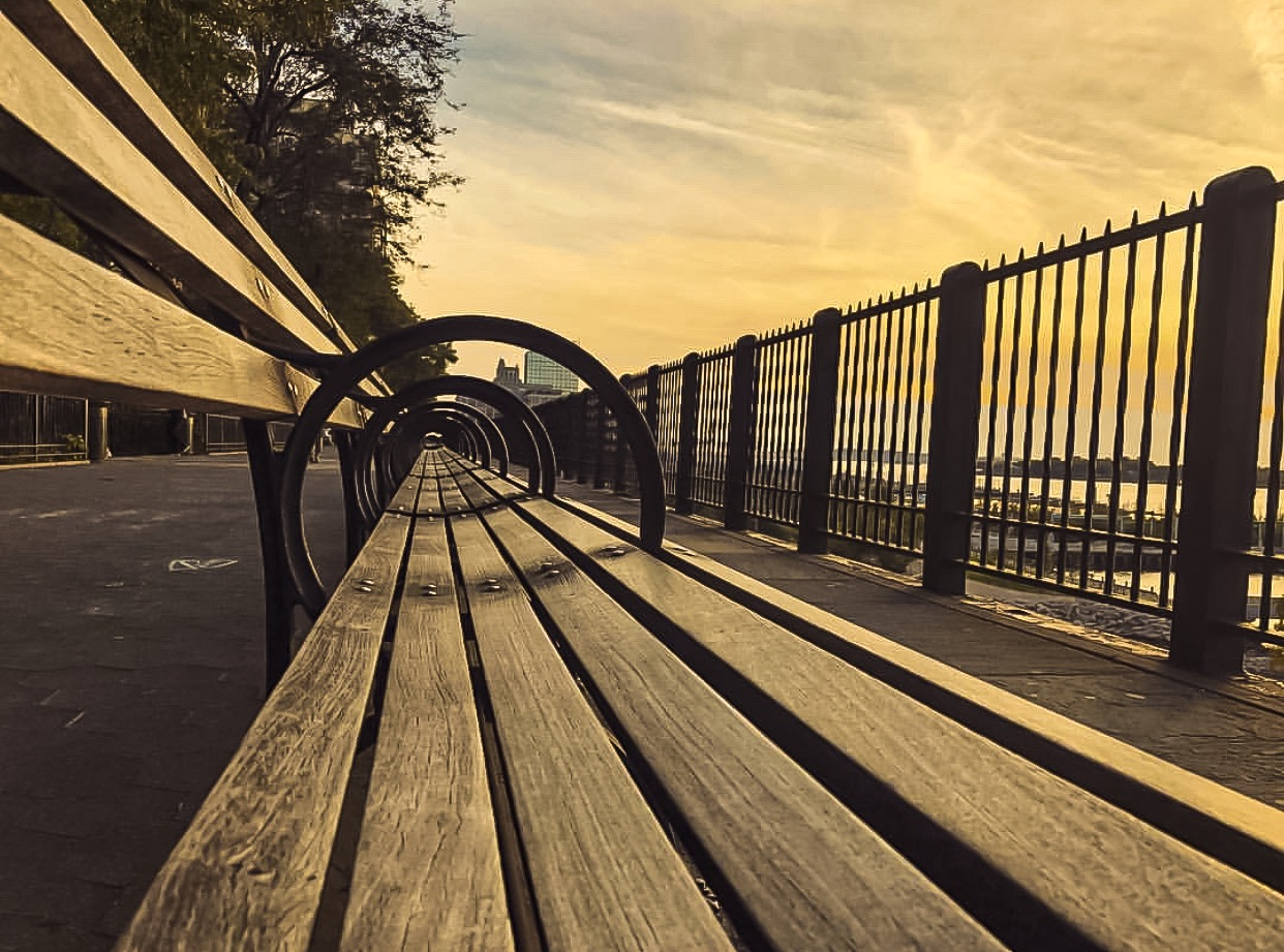can you imagine how many stories these benches have witnessed since1947, when the brooklyn heights promenade was opened to the public?
