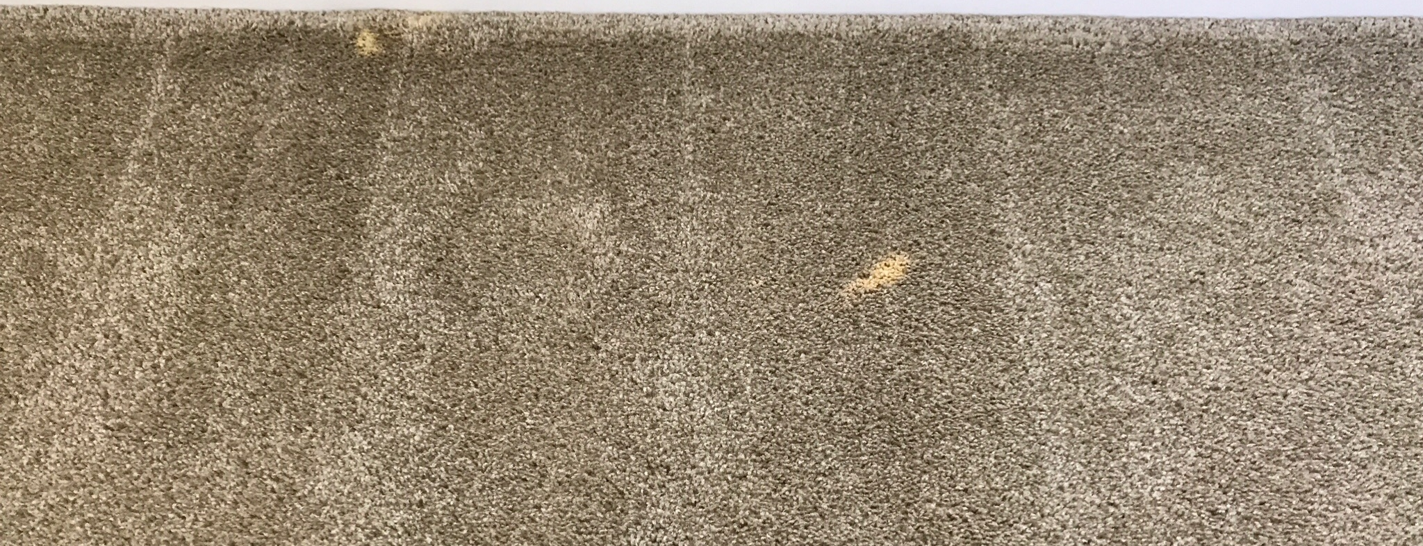 Carpet Dyeing -