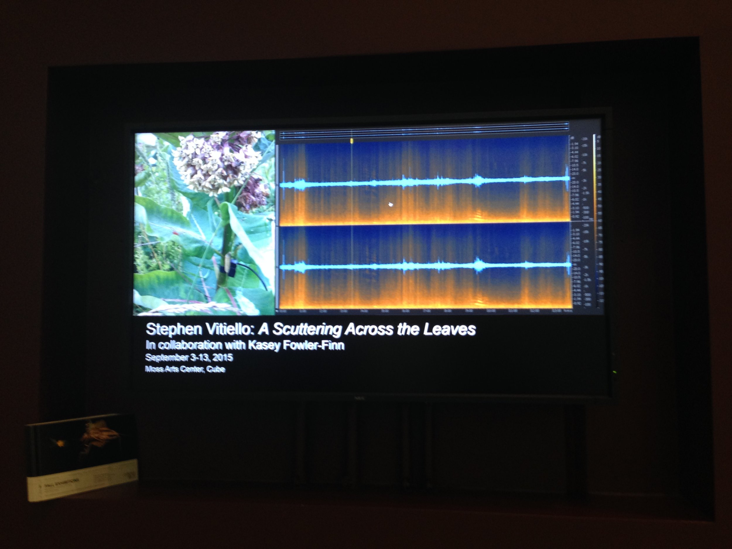 Artist Stephen Vitiello presents our collaboration on the art of sound vibrations at the Moss Arts Center.  Click here to learn more about the Sound Art project.