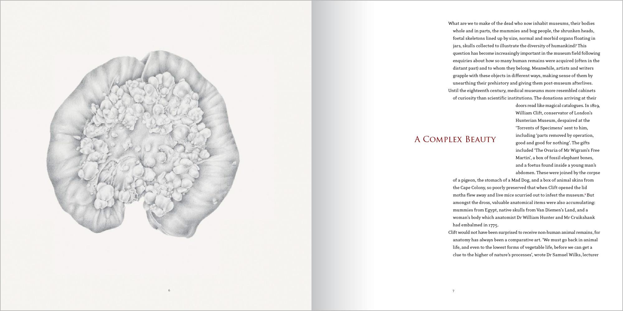 Catalogue-AComplexBeautySpread-2.jpg