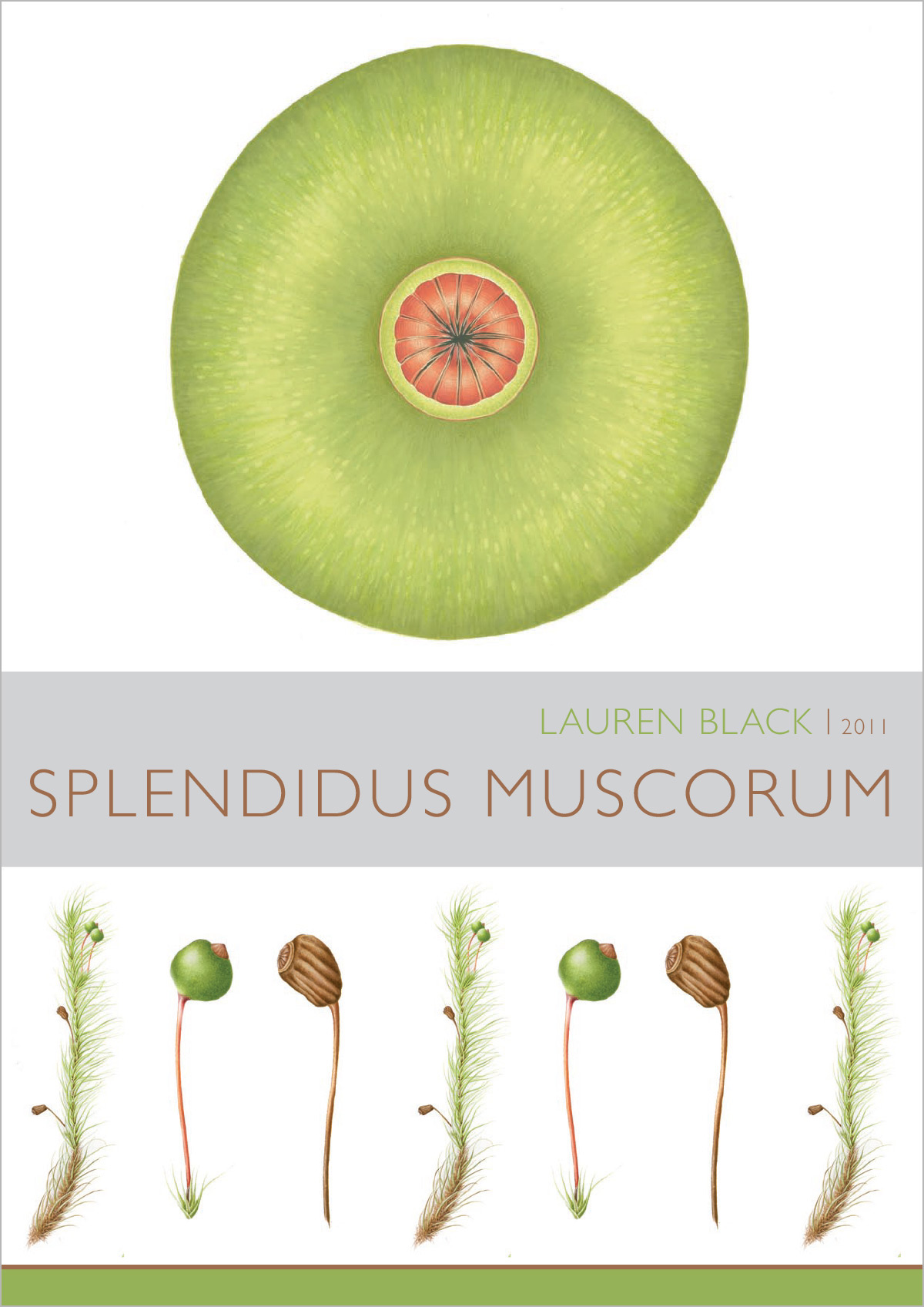 Spledidus Muscorum – 2011   The Allport Library and Museum of Fine Arts LINC Tasmania