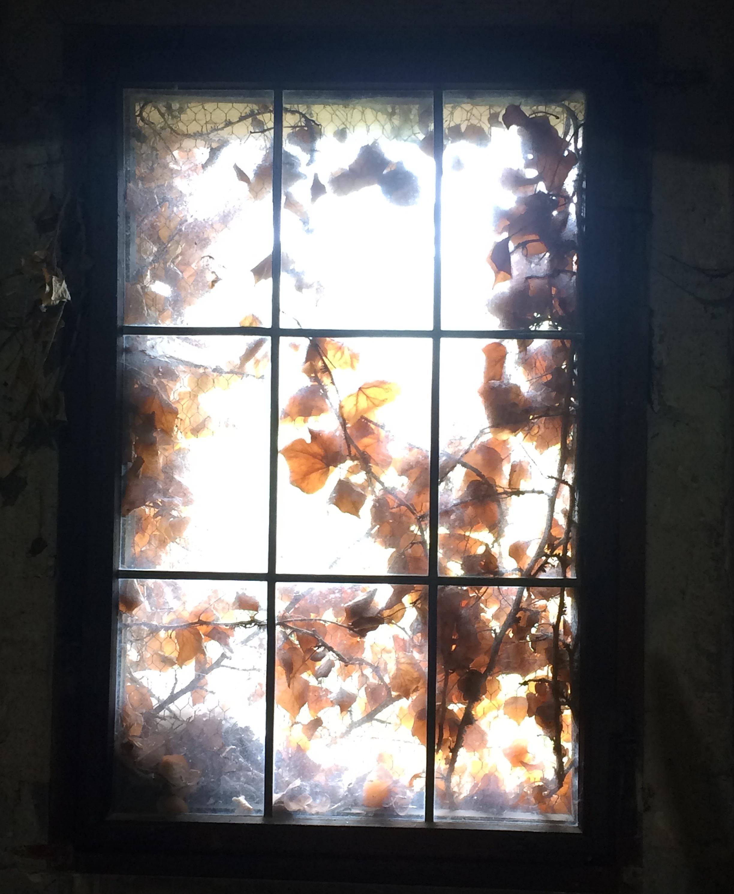 Inside a torture chamber, Prague, Czech Republic 2015