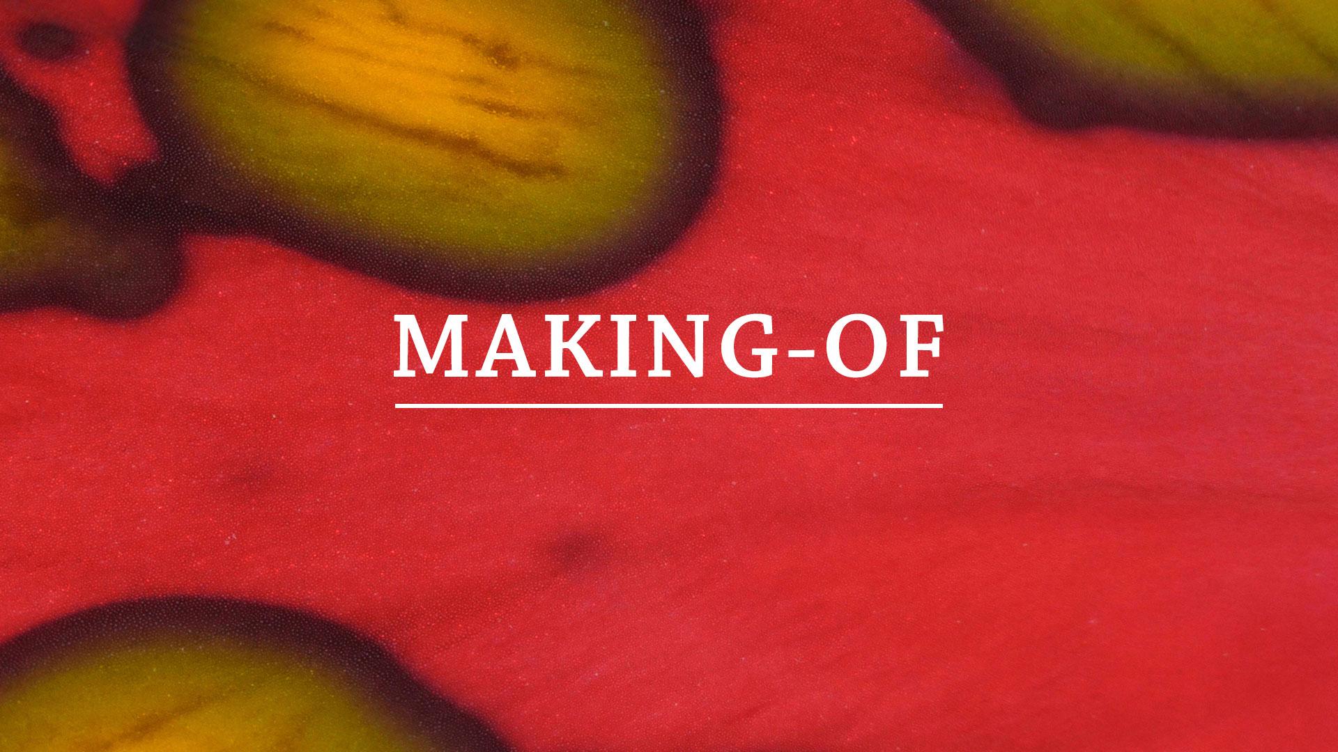MAKING-OF.jpg