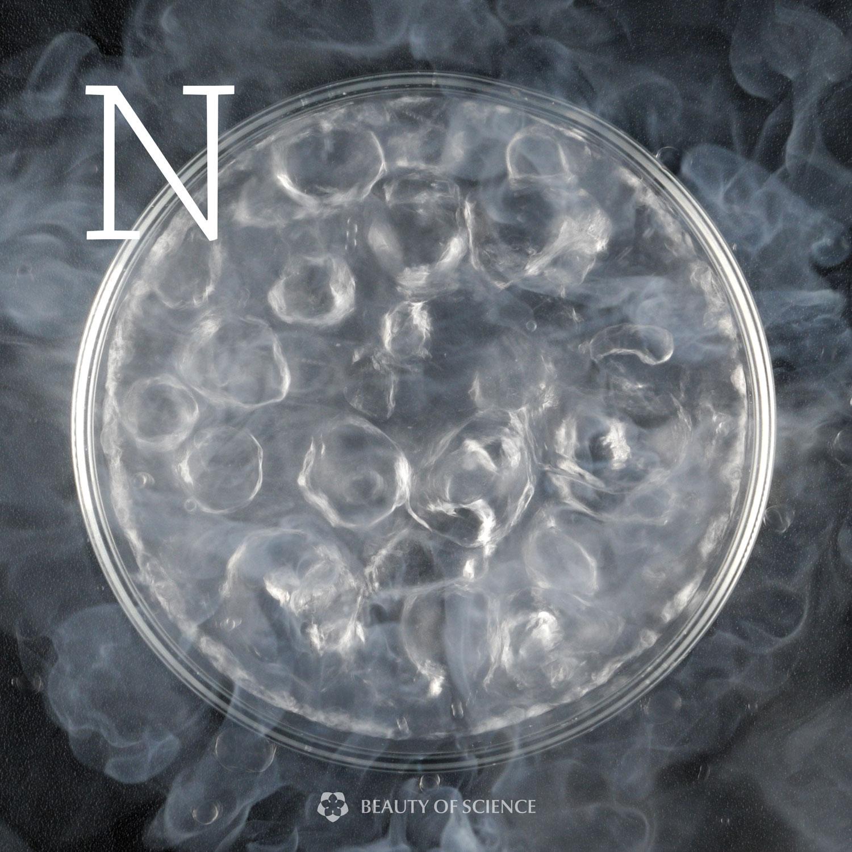 Nitrogen (3.2%)