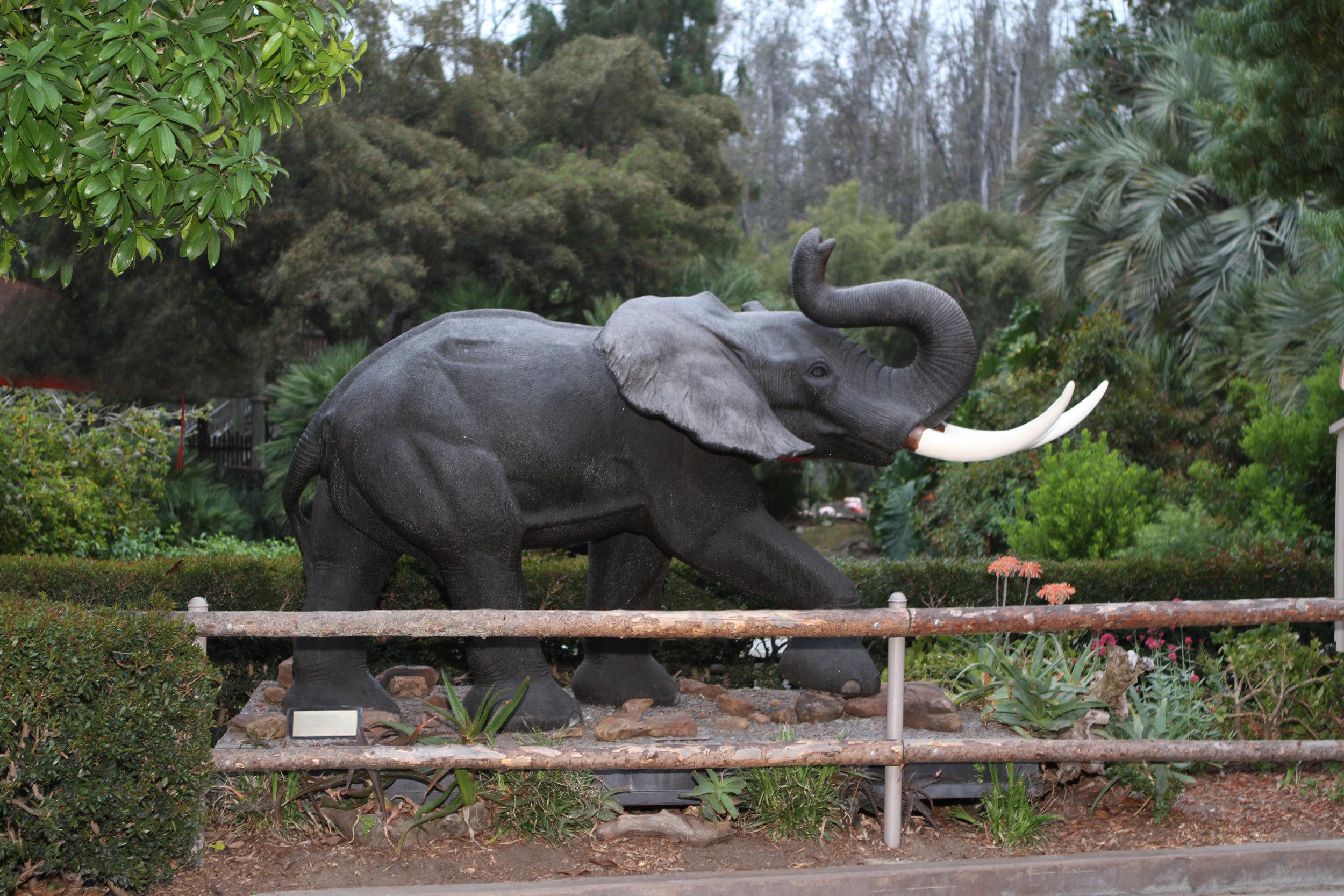 Safari Park (25).jpg