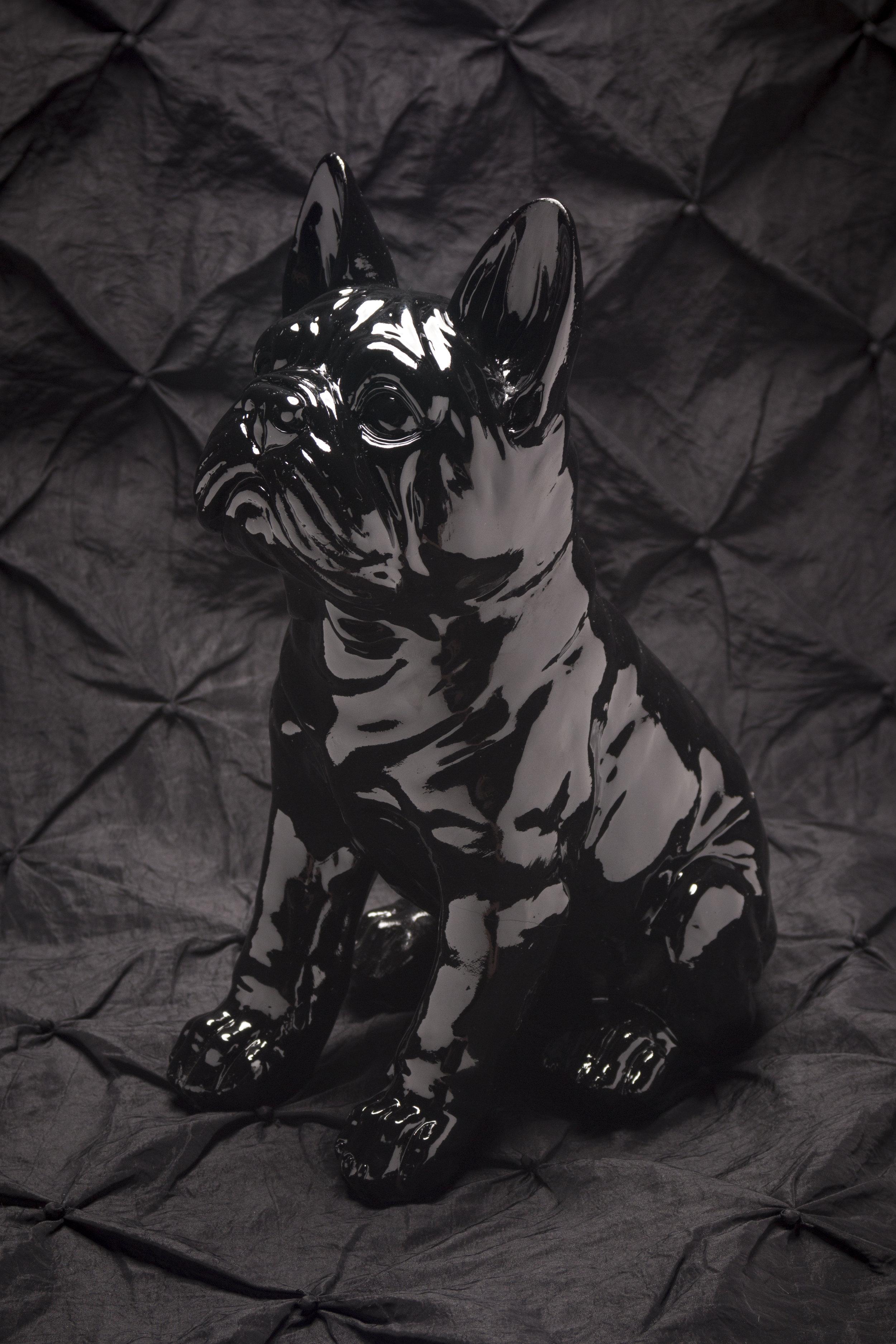 blackonblackdog.jpg