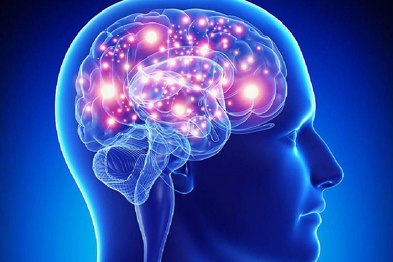 NEUROLOGIA/NEUROFISIOLOGIA
