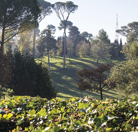 Relax nel verde di Roma - Un laboratorio di nutrizione e attività fisica nel verde di Roma.